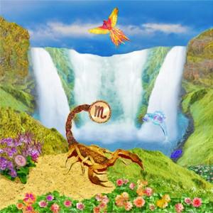 Skorpion u Fischchen